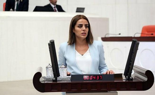 HDP'li Başaran: Halkın sizin gibi Malta'da şirketleri yok, gemicikleri yok