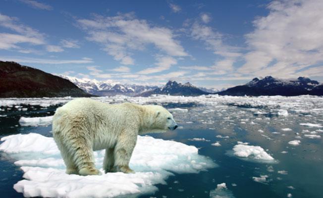 Kuzey Kutbu'nda 'eriyen buzulları yeniden dondurma' projesi