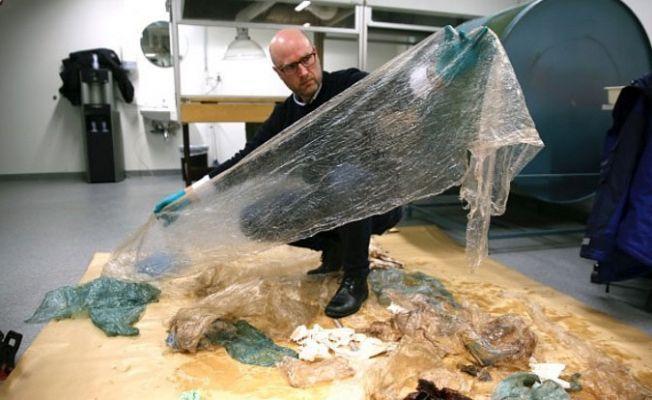 Norveç'te balinanın midesinden 30 plastik torba çıktı
