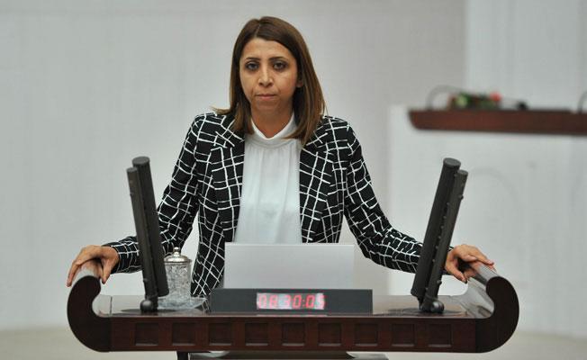 HDP, 'Hayır' kampanyası yürütenlere yönelik baskıları Meclis'e taşıdı