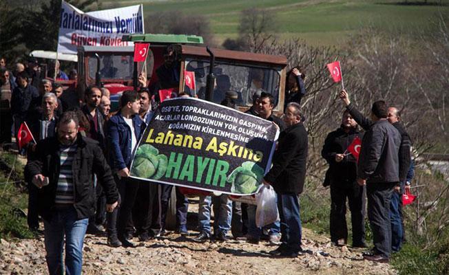 Longoz ormanına sanayi bölgesi yapımı durduruldu
