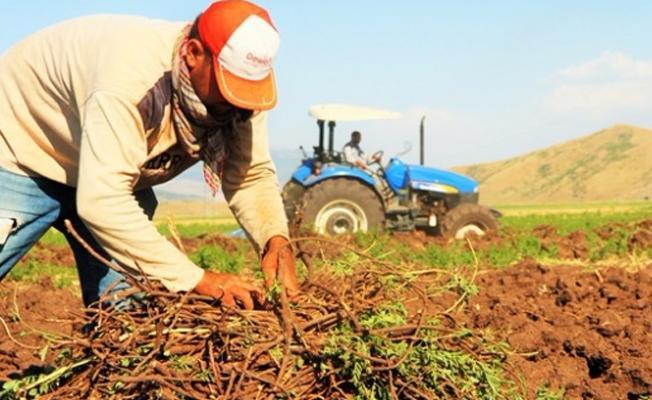 Diyarbakır'da 4 bin çiftçinin 70 milyon lirasına DEDAŞ bloke koydu