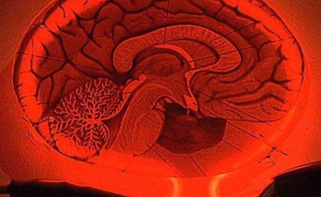 MR yoluyla zihnimizi nasıl eğitebiliriz?