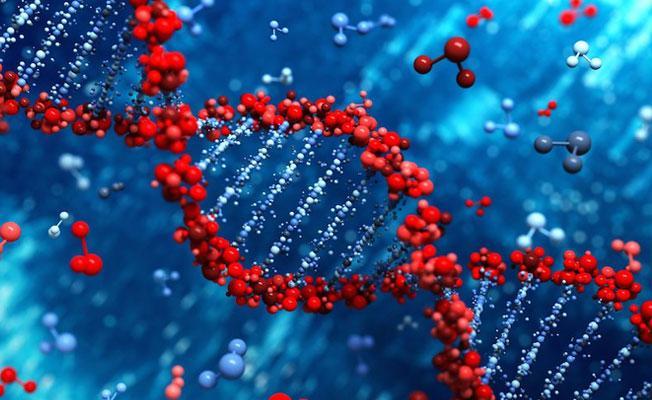 Kötü yaşam tercihlerimiz DNA aracılığıyla gelecek nesillere aktarılabiliyor
