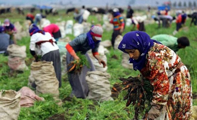 Tarım işçisi kadınlar anlatıyor: Molada ikinci çayı bile içirtmiyorlar