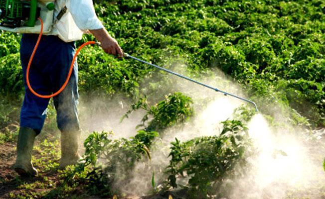 Türkiye'de de kullanılan tarım ilacı, ABD'de kanser izleme listesine alındı