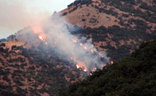 Dersim'de altı bölgede süren orman yangınlarıyla ilgili açıklama