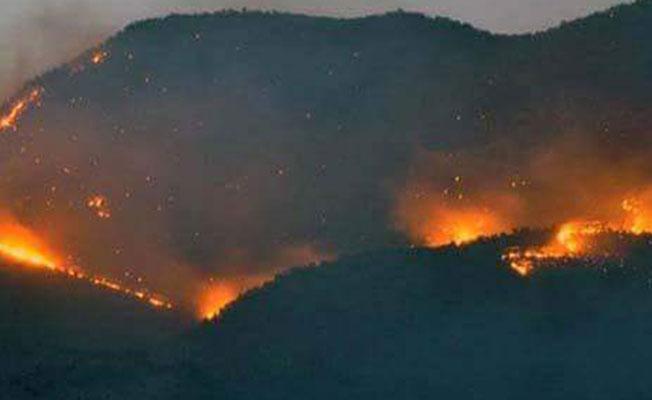 Dersim'de orman yangını: 'Özel güvenlik bölgesi' diye müdahale edilmiyor
