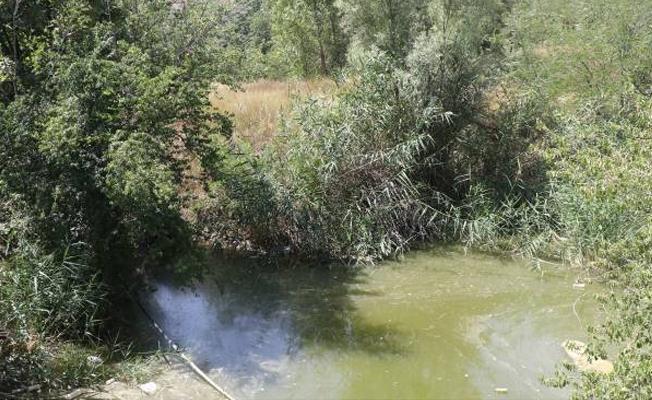 Eymir Gölü tehdit altında