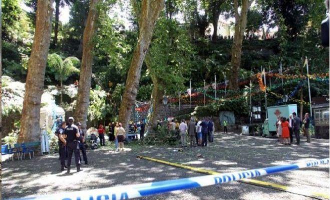 Festival alanına ağaç devrildi: 11 ölü