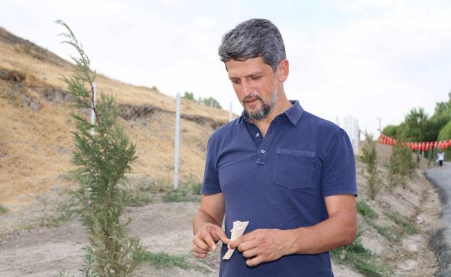 HDP'li Paylan, üzerine tuvalet yaptırılan Ermeni mezarlığında: Ölülerimize saygı gösterilsin