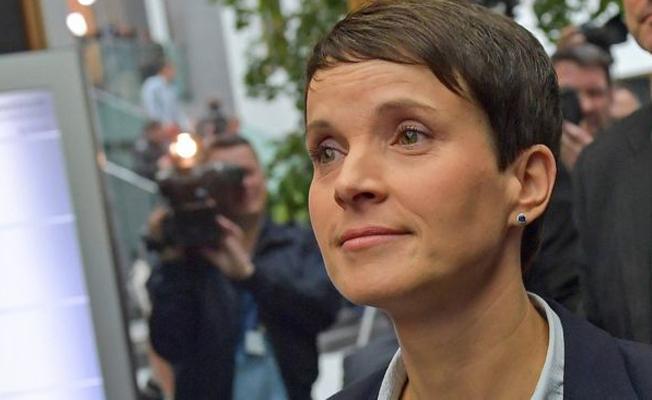 Almanya'da büyük çıkış yapan aşırı sağcı partide erken ayrılık