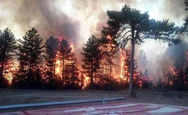 Bolu'da orman yangını yerleşim yerine yaklaştı, mahalle boşaltıldı