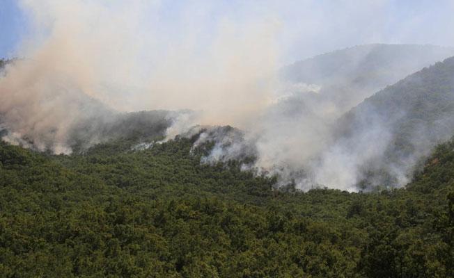 Dersim'de süren yangının zararı: 400 hektarlık alan kül oldu