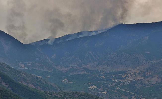 Munzur Vadisi Milli Parkı'nda yine yangın