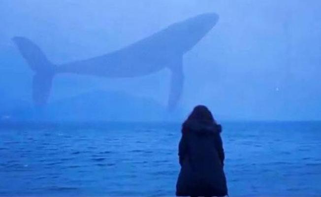 Uzmanlardan ailelere 'mavi balina' uyarısı