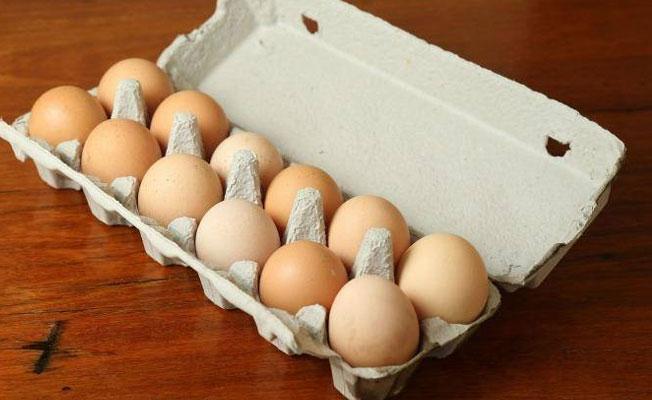 Zehirli yumurta 40 ülkeye yayıldı, içlerinde Türkiye de var