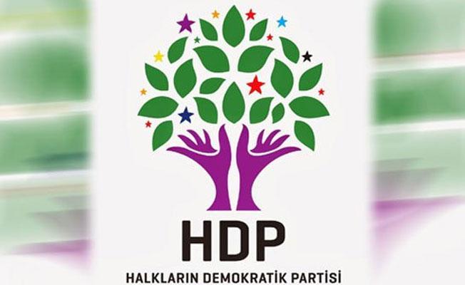 HDP ilçe yöneticisi gözaltına alındı