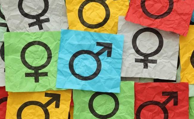 Hopa Halkevi'nin 'toplumsal cinsiyet atölyesi'ne 'müstehcenlik' soruşturması