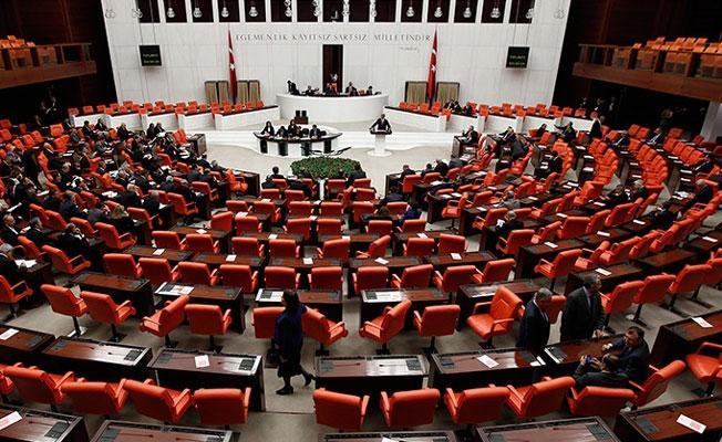 HDP'li Lezgin Botan'dan Meclis'te 'Kürdistan' itirazı
