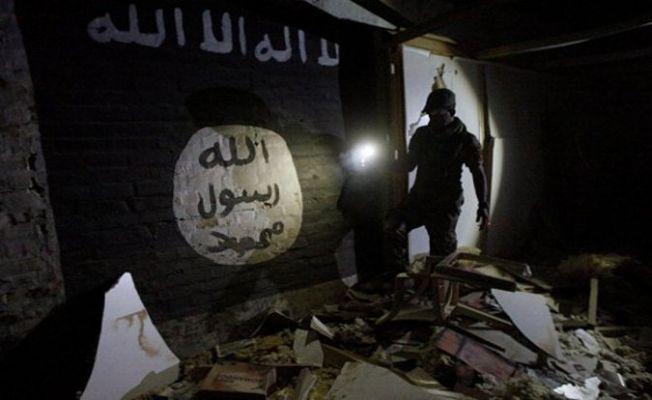 Robert Fisk: IŞİD'cileri öldürmeyin!