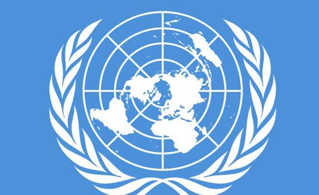 BM Barış Gücü'ne saldırı: 14 ölü