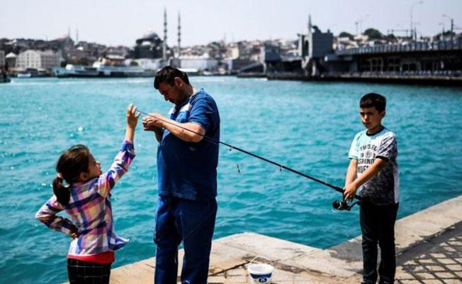 Haftada bir balık yiyen çocuklar daha zeki oluyor