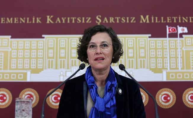 HDP'den Hayvan Hakları Kurulu için teklif