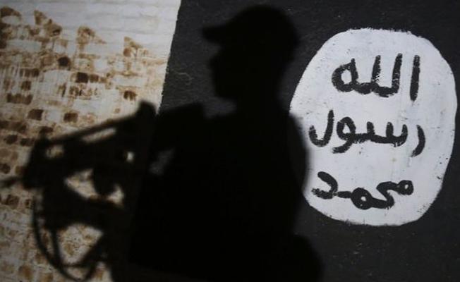 Hollanda 'terör zanlısı' kardeşleri vatandaşlıktan çıkarıyor
