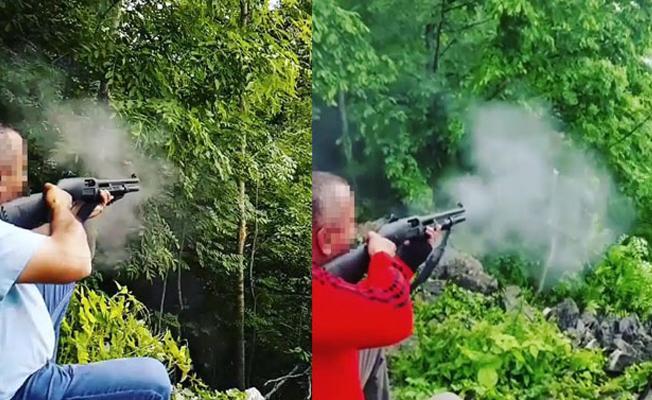 Yeşil alanlar koordinatörü pompalı tüfekle ateş ederek ağaçları devirdi