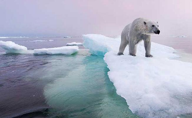 Güney Kutbu'nda yağan yağmur bilim insanlarını endişelendirdi