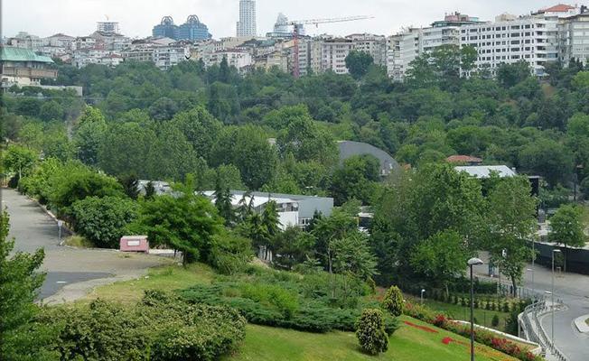 Swissotel, Maçka Parkı çevresindeki ağaçların kesilmesi için başvurdu