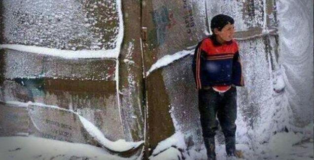 8'i çocuk, 14 kişi donarak öldü