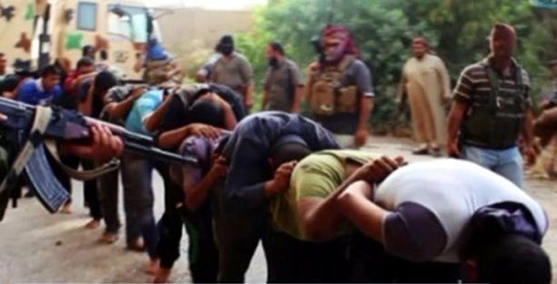Af Örgütü: IŞİD birçok bölgede toplu infazlar yapıyor