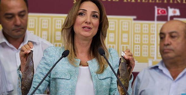 'AKP iktidarı döneminde sadece kadınlar öldürülmüyor'