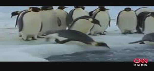 AKP penguene bile savaş açtı