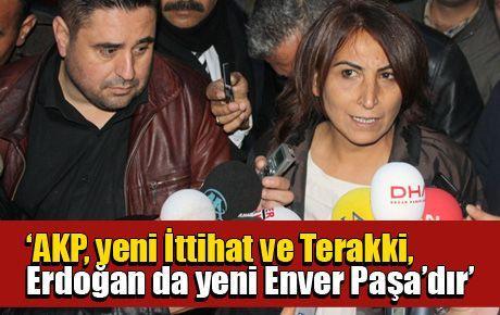 'AKP, yeni İttihat ve Terakki, Erdoğan da yeni Enver Paşa'dır'
