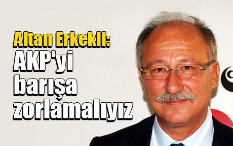 Altan Erkekli: AKP'yi barışa zorlamalıyız