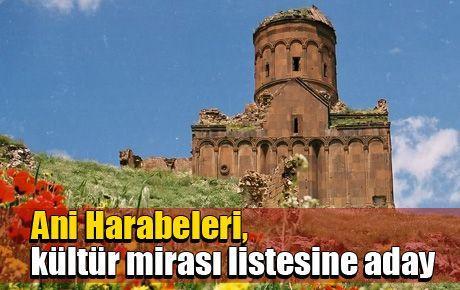 Ani Harabeleri, kültür mirası listesine aday