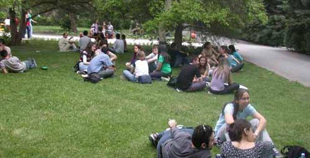Ankara Üniversitesi'nden öğrencilere: Alkolik misin?