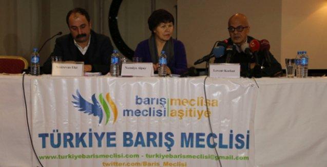 Barış Meclisi'nden HDP ve AKP'ye çağrı: Birlikte çözüm üretin