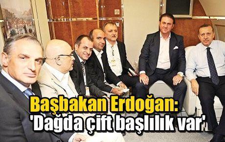 Başbakan Erdoğan: 'Dağda çift başlılık var'