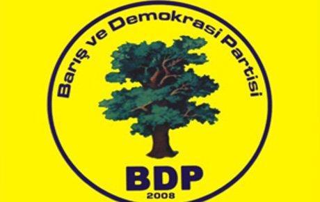 BDP cezaevleri raporunu açıkladı