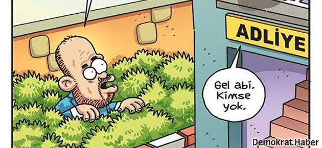Bilal Erdoğan Penguen'de