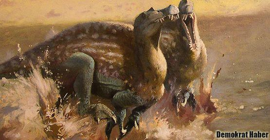 Bilinmeyen bir dinozor türü keşfedildi