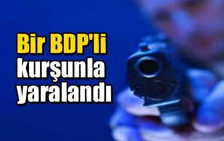 Bir BDP'li kurşunla yaralandı