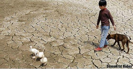 Dünya en sıcak yılı yaşıyor