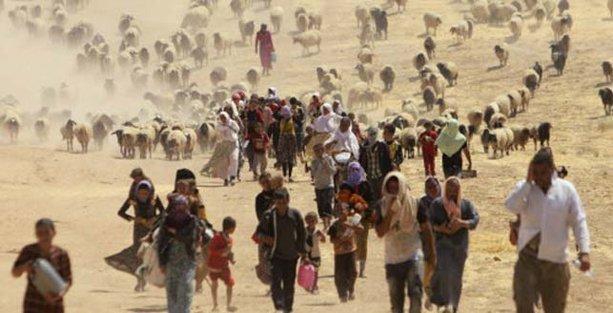 BM'den Ezidi Kürtler raporu: 5 bin erkek öldürüldü 7 bin kadın kaçırıldı!