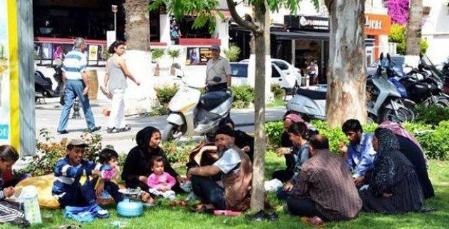 Bodrum'da esnaf şikayeti 40 Suriyeli'yi Aydın'a sürdürdü!