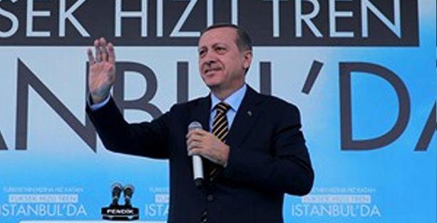 Erdoğan 'resmi devlet organizasyonları' ile propaganda yapıyor